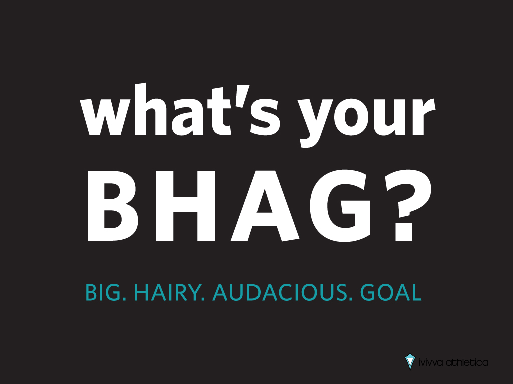 my big hairy audacious goal Bhag (pronounced 'bee-hag') stands for 'big hairy audacious goal' first written about by james collins and jerry porras in their great book 'built to last' it is a goal that really stretches the organisation way beyond most people's imagination of what is possible.