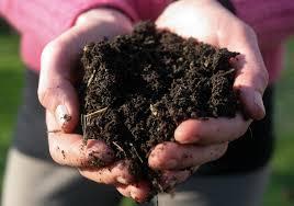 good-dirt